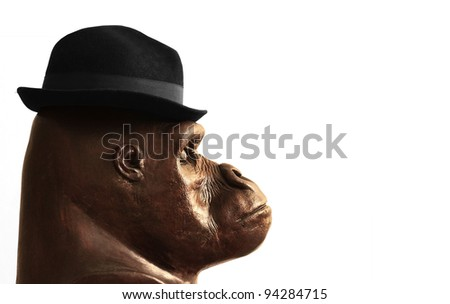 Concept photo of a sculpture of a gorilla head in profile wearing a businessman hat with lots of white copy space - stock photo