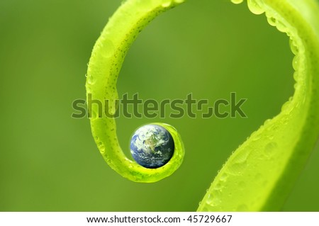 concept photo of earth on green nature, Earth map by courtesy of visibleearth.nasa.gov - stock photo