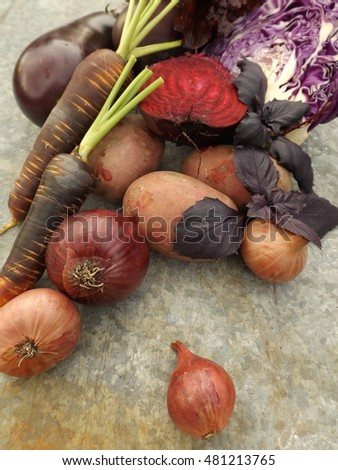 Concept: purple vegetables on rustic background.