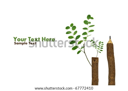 Vector diagram showing parts carrot whole stock vector