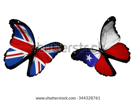 Concept - two butterflies with UK and Chile flags flying