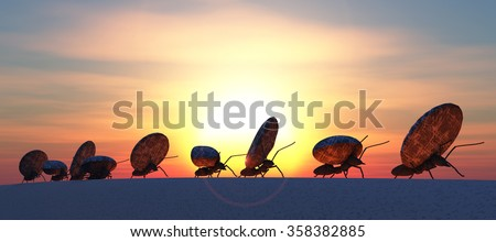 concept work, team of ants moving stones - stock photo
