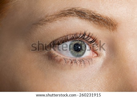 Conceptual Close up Gray Eye of a Woman Looking Up