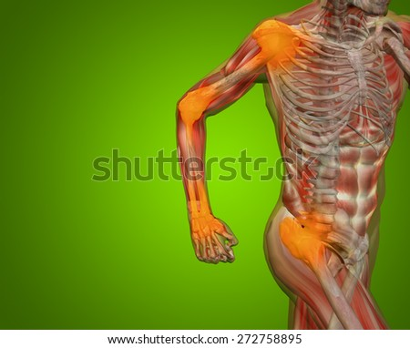 Conceptual 3D human man anatomy or health design joint or articular pain ache injury over green gradient background  for medical fitness medicine bone care hurt osteoporosis painful arthritis or body - stock photo