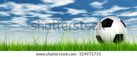 Conceptual 3D soccer ball in fresh green summer or spring field grass with a blue sky background banner metaphor to sport, goal, competition, play, team, fun, stadium, meadow, activity soccerball - stock photo