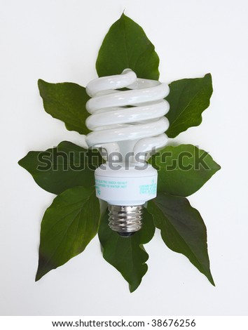 Conceptual fluorescent lightbulb - stock photo