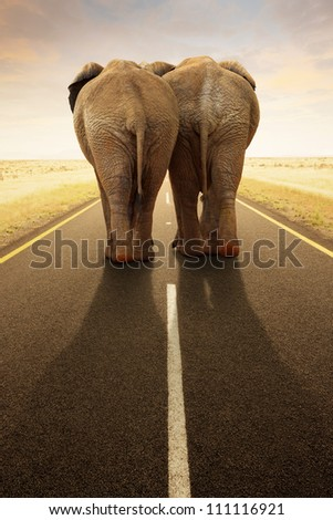 Conceptual - Going away together / travel by road (Digital composite) - stock photo
