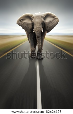 Conceptual - Heavy duty transport / travel by road (Digital composite) - stock photo