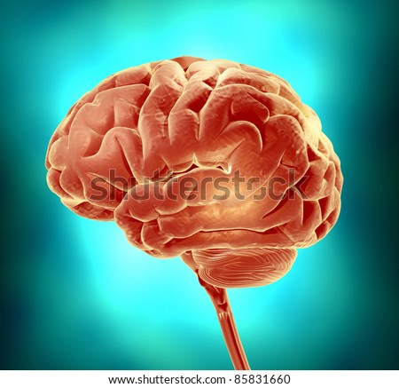 Conceptual image of a brain. 3d render illustration - stock photo