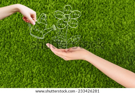 Conceptual image of a woman hand growing new ideas and a Big idea flourish, and one hands watering the  flower drawing isolated on green background.Conceptual idea, Team. - stock photo