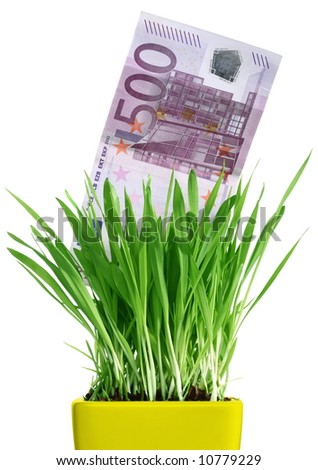 conceptual image of 500 euro bills growing in a pot with grass. isolated on a white background