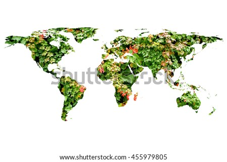 conceptual image of flat world map and leaves. NASA flat world map image used to furnish this image.