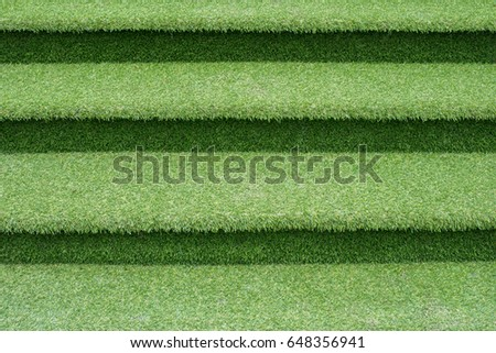 Conceptual image of Green grass staircase with like green plant