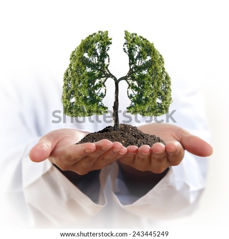 Conceptual image of green tree in hands shaped like human lungs - stock photo