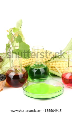 Conceptual photo of bio fuel from corn and rape seeds.  Isolated on white - stock photo