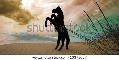 Conceptual picture of wilderness based on classic horse posture.Panoramic frame.