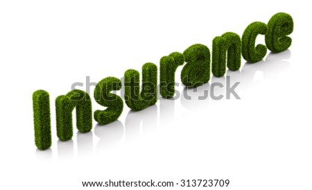 conceptual word insurance covered of grass isolated on white background - stock photo