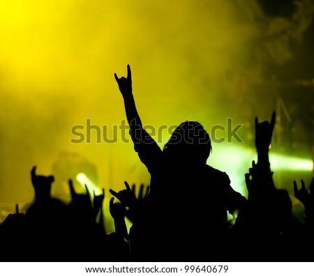 Concert. Fans - stock photo