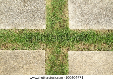 Concrete floor with green grass in cross shaped - stock photo