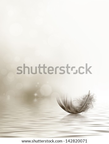 Condolence or sympathy design with a feather drifting on water.