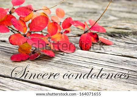 Condolence with twig with red leaves/sincere condolences/english - stock photo