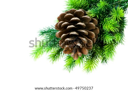 Cone and christmas tree isolated on white - stock photo