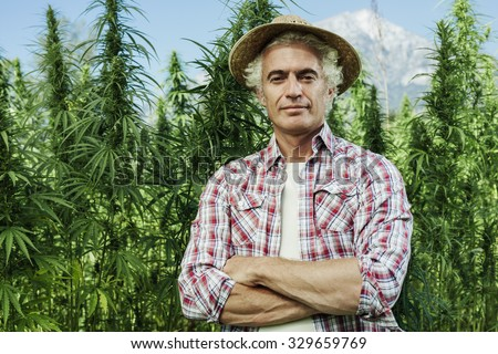 Confident farmer posing with arms crossed in his hemp field and smiling at camera - stock photo