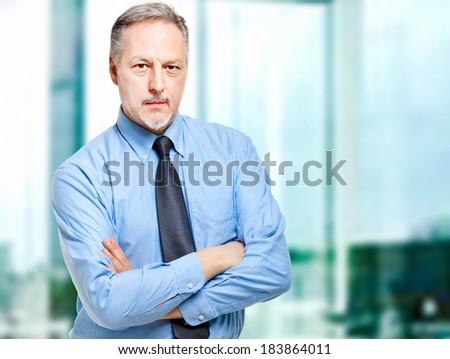 Confident senior businessman portrait  - stock photo