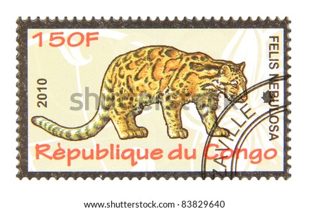 CONGO - CIRCA 2010: A stamp printed in Congo showing Clouded leopard, circa 2010