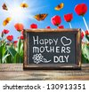 congratulations on Mother's Day at the background of the spring landscape - stock photo