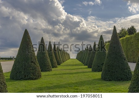 conical hedges lines and lawn, Versailles Chateau near Paris, France - stock photo