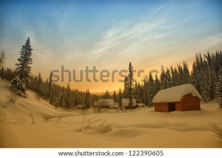 coniferous forest  in december at minus 40 degrees - stock photo