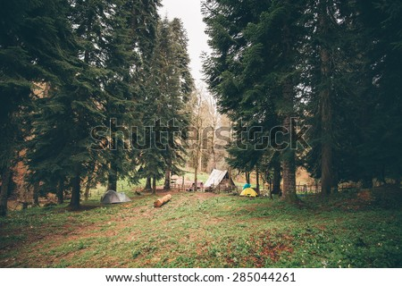 Coniferous Forest with camping Landscape moody weather colors - stock photo