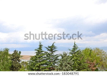 Coniferous Trees in the shore of lake Ohrid, in Ohrid, Macedonia, on May 18, 2011. - stock photo