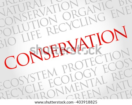 Conservation word cloud, environmental concept - stock photo