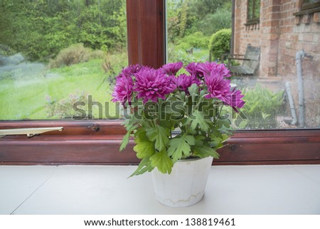 conservatory - room in house next to garden - stock photo