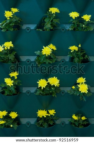 container for plants - stock photo
