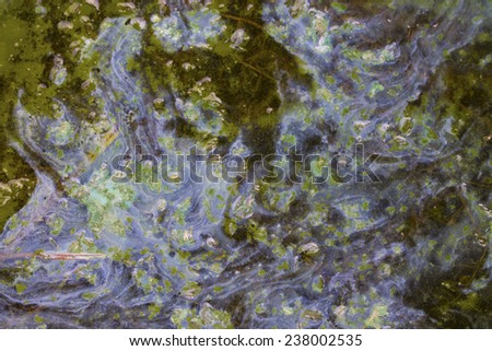 contaminated water  - stock photo