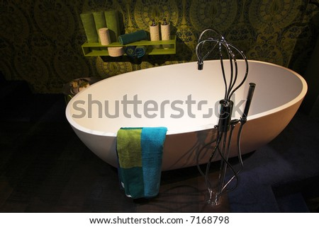 Contemporary Bathroom Scene