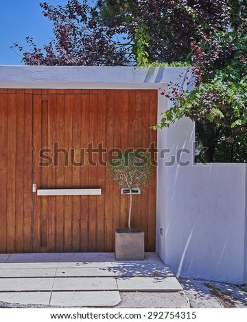contemporary house wooden door and flowerpot, Athens Greece