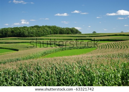 Contour Strip Farming - stock photo