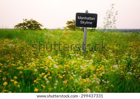 Contradictory sign indicating Manhattan skyline in middle of rural countryside - stock photo