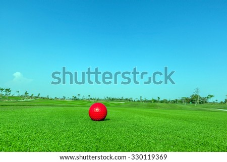 Contrasting of red demo golf ball and green golf course background. - stock photo