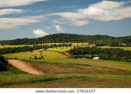 Conversion of areas of Atlantic rainforest for cattle, agriculture and forestry in the region of Araucaria forest. Deforestation is a main cause of brazilian contribution to global warming. - stock photo