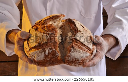 Cook holding fresh bread. Baker holding a fresh bread taken out of the oven. - stock photo