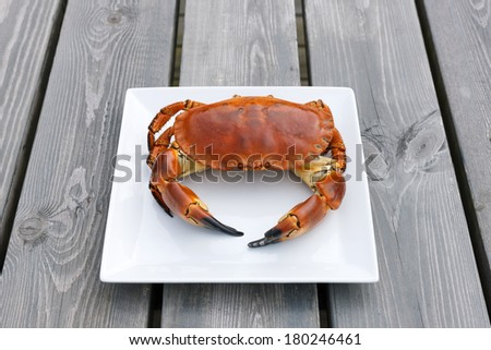 Cooked crab on white plate on a wooden background - stock photo