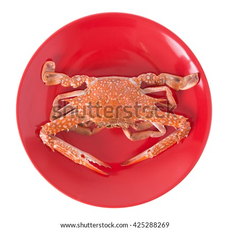 cooked crab prepared on red plate isolated on white background