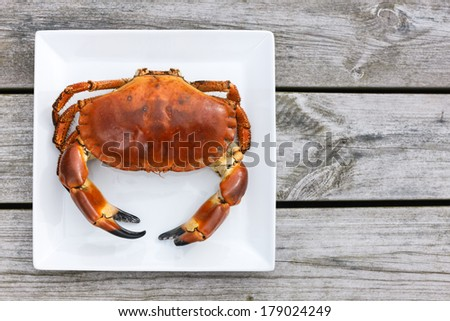 Cooked crab top view on white plate on a wooden background - stock photo
