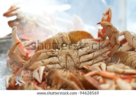 Cooked crabs at Fisherman's Wharf - San Francisco - stock photo