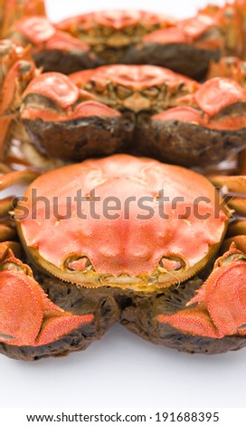 cooked crabs lined up - stock photo